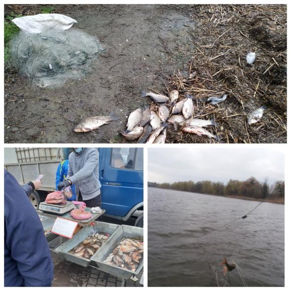 Протягом семи днів виявлено 22 правопорушення, - рибоохоронний патруль Вінниччини