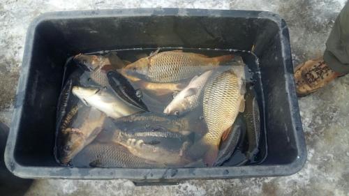 Рибоохоронний патруль Вінниччини викрив 32 порушення за тиждень роботи