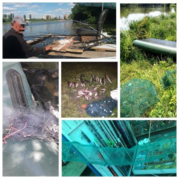 За липень виявлено 181 порушення зі збитками на майже 27 тис. грн, - Вінницький рибоохоронний патруль