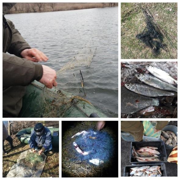 Протягом березня виявлено 150 порушень зі збитками на майже 81 тис. грн, - Вінницький рибоохоронний патруль