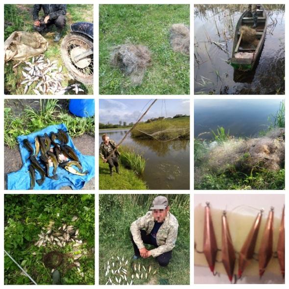 Протягом травня виявлено 246 порушень зі збитками на майже 38 тис. грн, - Вінницький рибоохоронний патруль